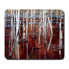 Automn Swamp Large Mouse Pad (rectangle)