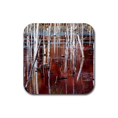 Automn Swamp Drink Coasters 4 Pack (Square)