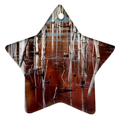 Automn Swamp Star Ornament (Two Sides)
