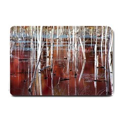 Automn Swamp Small Door Mat