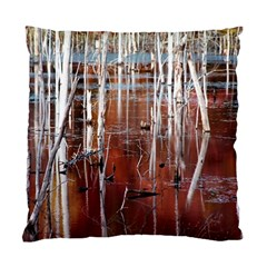 Automn Swamp Cushion Case (Two Sided)