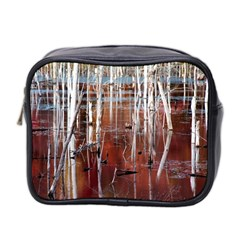 Automn Swamp Mini Travel Toiletry Bag (two Sides)