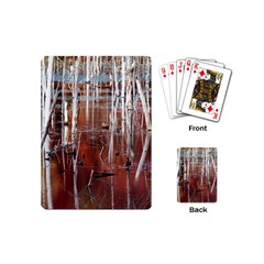Automn Swamp Playing Cards (Mini)