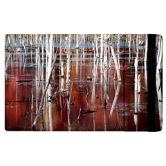 Automn Swamp Apple iPad 2 Flip Case