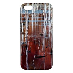 Automn Swamp iPhone 5S Premium Hardshell Case