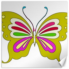 Color Butterfly  Canvas 20  x 20  (Unframed)