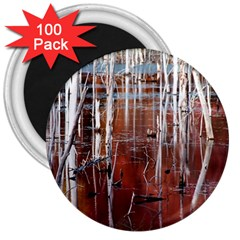 Swamp2 Filtered 3  Button Magnet (100 Pack)