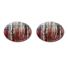 Swamp2 Filtered Cufflinks (Oval)