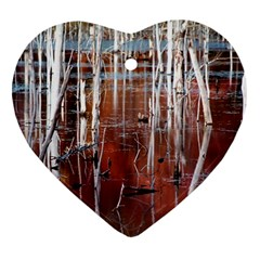 Swamp2 Filtered Heart Ornament (Two Sides)