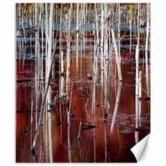Swamp2 Filtered Canvas 8  x 10  (Unframed)