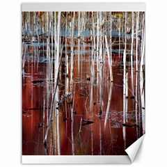 Swamp2 Filtered Canvas 18  X 24  (unframed)