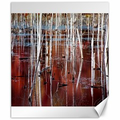 Swamp2 Filtered Canvas 20  x 24  (Unframed)
