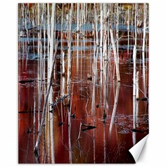 Swamp2 Filtered Canvas 11  x 14  (Unframed)