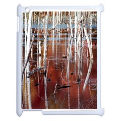 Swamp2 Filtered Apple Ipad 2 Case (white)