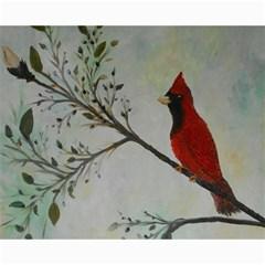 Sweet Red Cardinal Canvas 16  x 20  (Unframed)