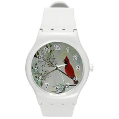 Sweet Red Cardinal Plastic Sport Watch (Medium)