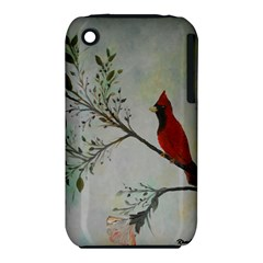 Sweet Red Cardinal Apple iPhone 3G/3GS Hardshell Case (PC+Silicone)