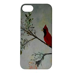 Sweet Red Cardinal Apple iPhone 5S Hardshell Case