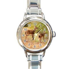 Deer in Nature Round Italian Charm Watch