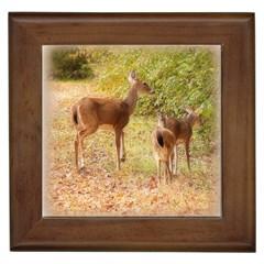 Deer in Nature Framed Ceramic Tile