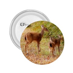 Deer in Nature 2.25  Button
