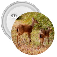 Deer in Nature 3  Button