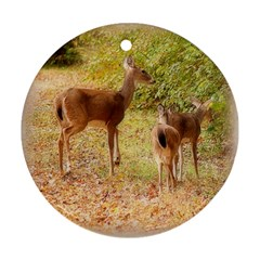Deer in Nature Round Ornament