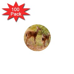 Deer In Nature 1  Mini Button Magnet (100 Pack)