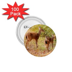 Deer in Nature 1.75  Button (100 pack)