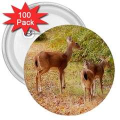 Deer in Nature 3  Button (100 pack)
