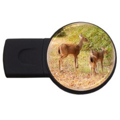 Deer in Nature 4GB USB Flash Drive (Round)