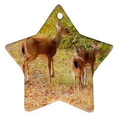 Deer in Nature Star Ornament (Two Sides)