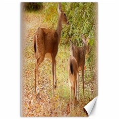 Deer In Nature Canvas 20  X 30  (unframed)