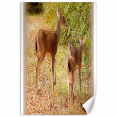 Deer in Nature Canvas 24  x 36  (Unframed)