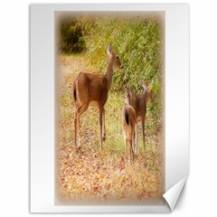 Deer In Nature Canvas 36  X 48  (unframed)