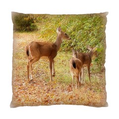 Deer in Nature Cushion Case (Two Sided)