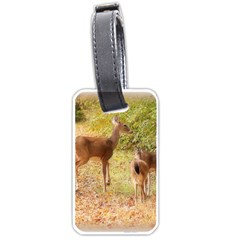 Deer in Nature Luggage Tag (Two Sides)