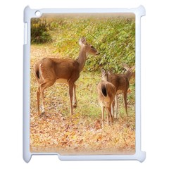 Deer In Nature Apple Ipad 2 Case (white)