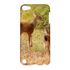 Deer In Nature Apple Ipod Touch 5 Hardshell Case