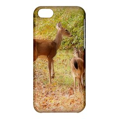 Deer in Nature Apple iPhone 5C Hardshell Case