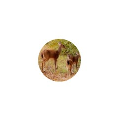 Deer in Nature 1  Mini Button Magnet