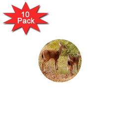 Deer in Nature 1  Mini Button Magnet (10 pack)