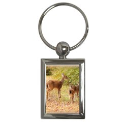 Deer in Nature Key Chain (Rectangle)