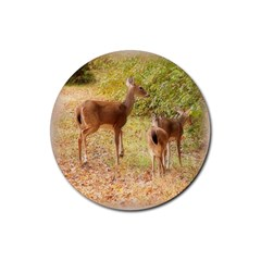 Deer in Nature Drink Coasters 4 Pack (Round)