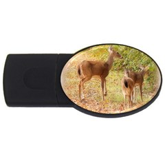 Deer in Nature 4GB USB Flash Drive (Oval)