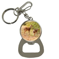 Deer in Nature Bottle Opener Key Chain
