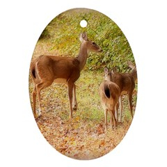 Deer in Nature Oval Ornament (Two Sides)