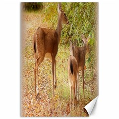 Deer in Nature Canvas 12  x 18  (Unframed)