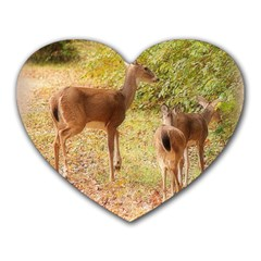 Deer In Nature Mouse Pad (heart)