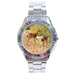 Deer In Nature Stainless Steel Watch